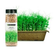 Amber Pea Seeds (810g)