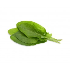 Green Sorrel refill (3 pack)