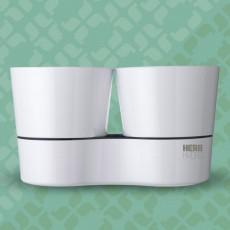 Herb Hydro pot twin white