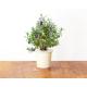 Lavendel navulverpakking (3 pakjes)