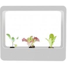 LED kweekbak voor kruiden