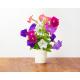 Ricarica Petunia (confezione da 3)