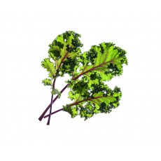 Red Kale refill (3 pack)