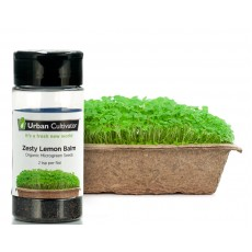 Tangy Lemon Balm Seeds (15g)