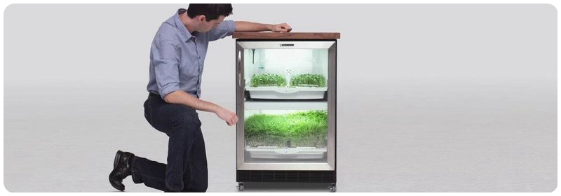 Urban Cultivator Residential Human