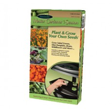 Grow Anything Seed Kit