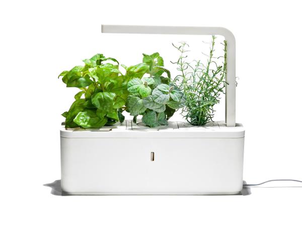 indoorgardenshop. Black Bedroom Furniture Sets. Home Design Ideas